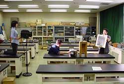 Lye and aluminum experiment essay