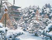 Explora Japon Parte 1 Nature8