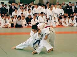 Japanische Sportart