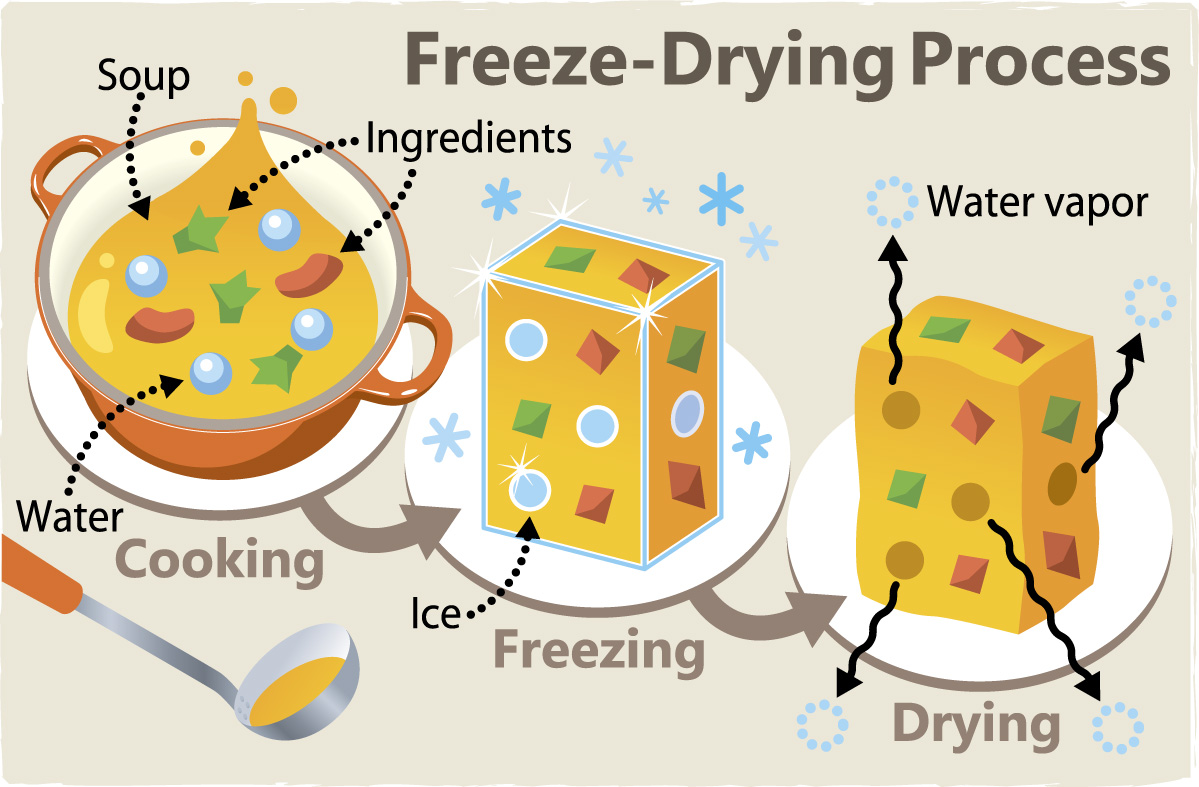 How Can I Freeze Dry Food At Home