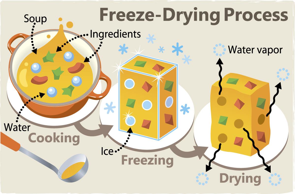 Freeze-Dried Foods 2 - Hi-tech - Kids Web Japan - Web Japan