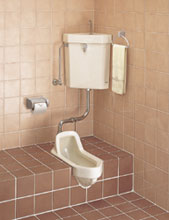 Squat Or Sit Toilet