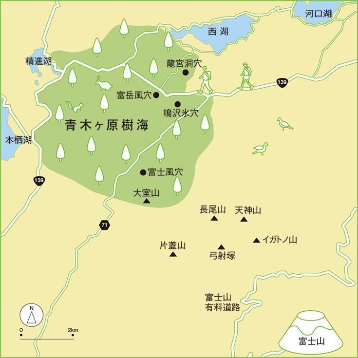 Niponica NO - Japan map fuji