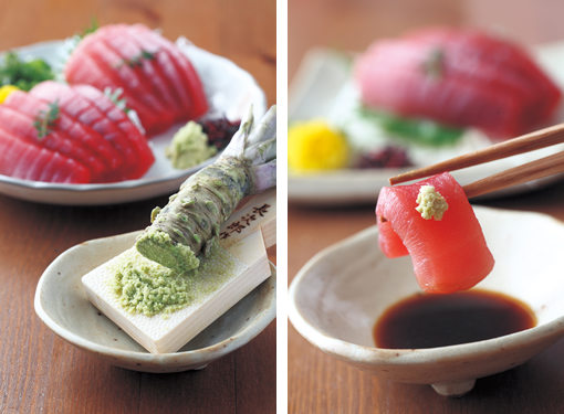 Niponica for Plante wasabi