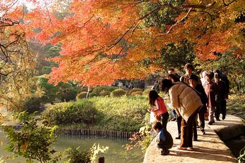 Exploring everyday tokyo